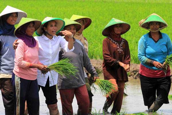 MUSIM TANAM : Pupuk Indonesia Percepat Distribusi