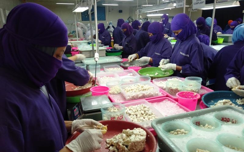 PENYERAPAN TENAGA KERJA JATENG : Pengangguran Makin Dalam