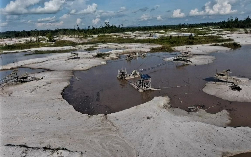 REKLAMASI TAMBANG  : Lahan Bioenergi Dikebut