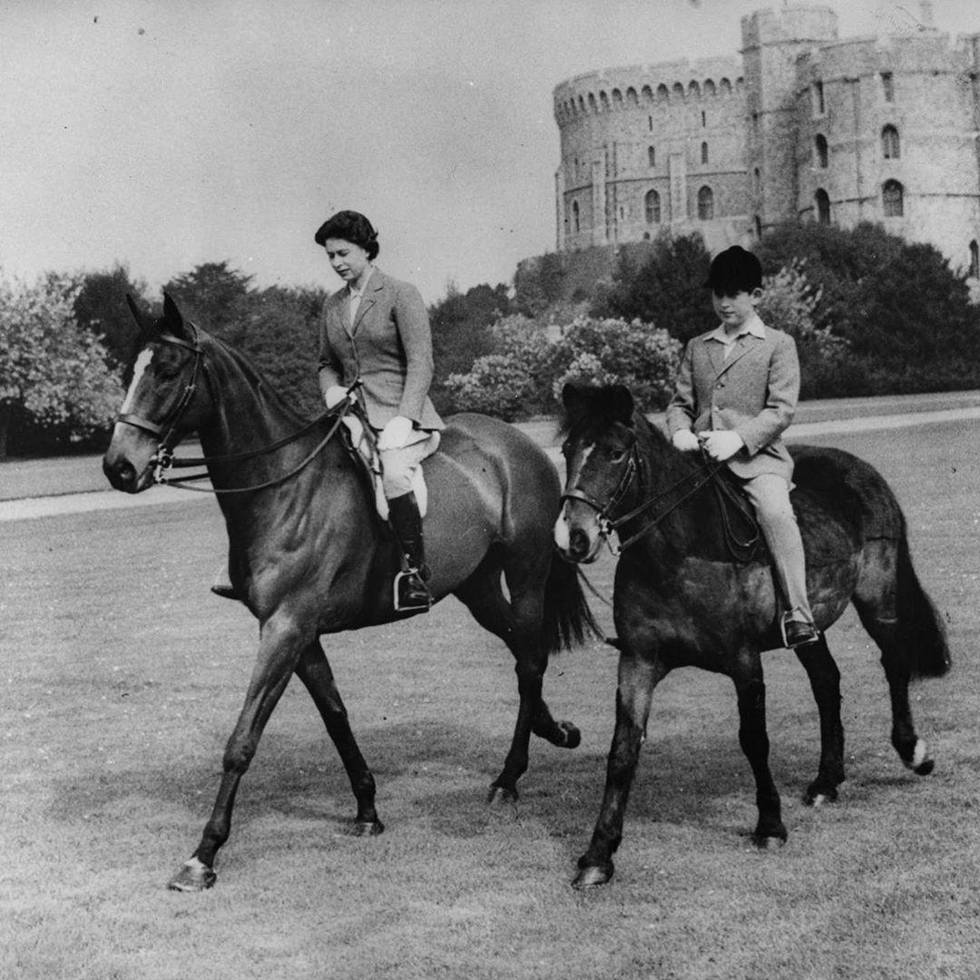 kuda pacu ratu elizabet