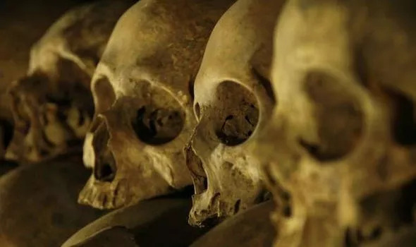 tulang-tulang manusia di geraja polandia