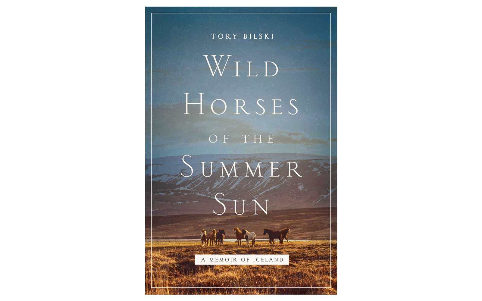 Wild Horeses of the Summer oleh Tory Bilski