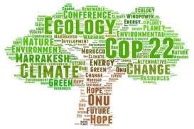Indonesia Aktor Utama Pencegahan Perubahan Iklim