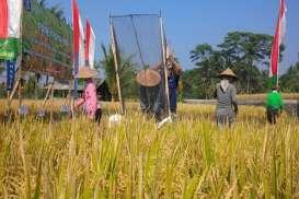 Begini Respons Petani Subak Bali Saat Terima Kartu Tani
