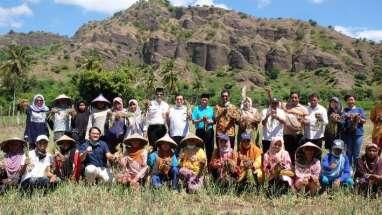 Demplot Pupuk Indonesia Grup Dorong Produktivitas Tanaman Pangan
