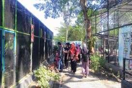 Umbul Square Jadi Destinasi Liburan Sekolah