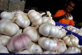 Tak Penuhi Wajib Tanam, PT CSA Masuk Daftar Hitam Importir Bawang Putih
