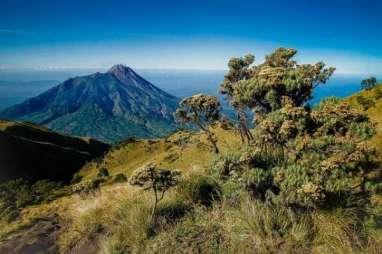 Peringati HUT RI, 3.000 Pendaki Serbu Gunung Merbabu Jumat Malam