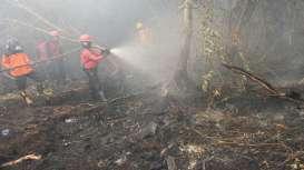 Pemerintah Klaim Titik Api Telah Berkurang Signifikan