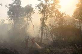 857.756 Hektare Lahan Terbakar Sejak Januari 2019