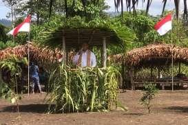 Bangun Kampung Budaya Suku Togutil, Pemprov Maluku Utara Gandeng Antam
