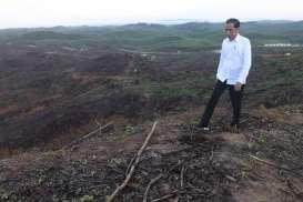 Jokowi: 2020, Gedung Mulai Dibangun di Ibu Kota Baru