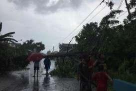Hujan Es Landa Desa di Sleman, Pohon Tumbang Terjadi di Sejumlah Wilayah
