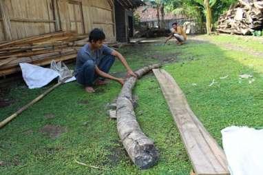 Penemu Fosil Gading Gajah 4 Meter Berharap Kompensasi Layak