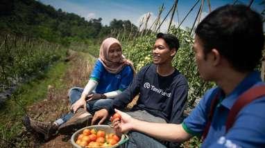 Yuliati Senang TaniHub Serap Panen Stroberi Asli Bali
