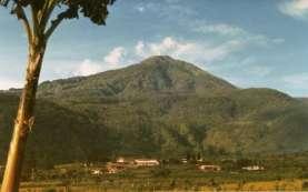 Warganet Rindu Piknik, Gunung Lawu Menggema di Dunia Maya