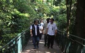 Forest Walk, Sabuga dan Kolam Renang Cipaku Segera Dibuka