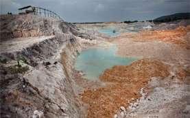 Hutan Rusak Akibat Timah di Babel akan Dijadikan Tambak Udang