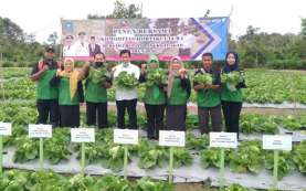 Warga Bangka Tengah Didorong Kembangkan Agrowisata
