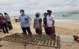 Petani Karang Hias di Pantai Pandawa Bali Tetap Ekspor Dikala Pandemi