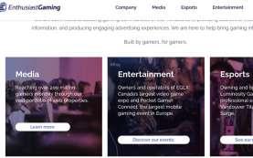 Enthusiast Gaming Klaim Pemasukan Stabil di Kuartal II/2020