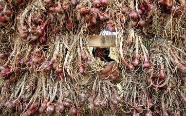 Wah! Perusahaan Ini Ekspor 20 Ton Bawang Merah Goreng ke Malaysia