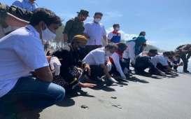 Pertamina Lanjutkan Program Konservasi Penyu di Pantai Cilacap