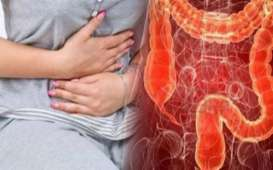 Simak 5 Makanan Pencegah Kanker Usus