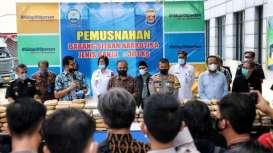 BNNP Banten Musnahkan Ganja Seberat 301 Kilogram