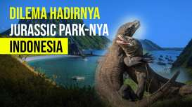 Viral! Proyek Geopark Komodo Ditolak