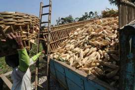 Upah Harian Buruh Tani Naik 0,09 Persen per Oktober 2020