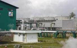 PLN Peroleh 'Green Loan' US$500 Juta dari MIGA