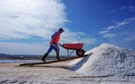 Kemenko Marves Targetkan Produksi Garam Nasional 3,1 Juta Ton pada 2021