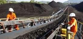 Historia Bisnis : Tambang Batu Bara BUMI Jadi Rebutan Investor
