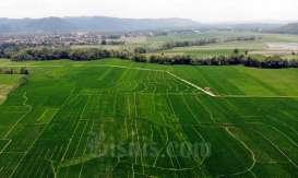 Agritech Jadi Akselerator Pertanian 4.0