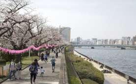 Korsel, AS, dan Jepang Gelar Pertemuan Kepala BIN Pekan Ini. Bahas Apa?