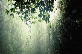 Cuaca Indonesia, Hujan Lebat Disertai Kilat dan Angin Kencang di Beberapa Wilayah