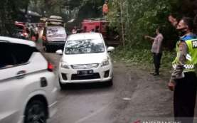 Jalur Menuju Selatan Cianjur Tertutup Longsor dan Pohon Bambu Tumbang