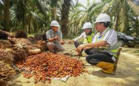 Cargill Bangun Pabrik Kelapa Sawit di Lampung Rp2,86 Triliun