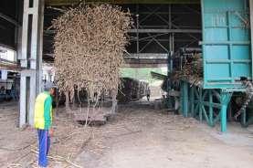 Kebun Tebu di Indonesia Terbatas, RNI Bakal Optimalisasi Aset lahan