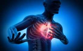 Apa Itu Henti Jantung Penyebab Pebulutangkis Markis Kido Meninggal Dunia?