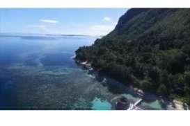 Potensi Tsunami di Maluku Tengah, BMKG Imbau Warga Jauhi Pantai