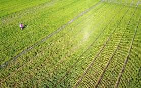 Lima Koridor Jalur Pertanian Dibangun di Kabupaten Garut