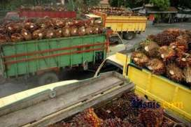 Pemakaian Minyak Jelantah untuk Konsumsi Pangan Masih Marak