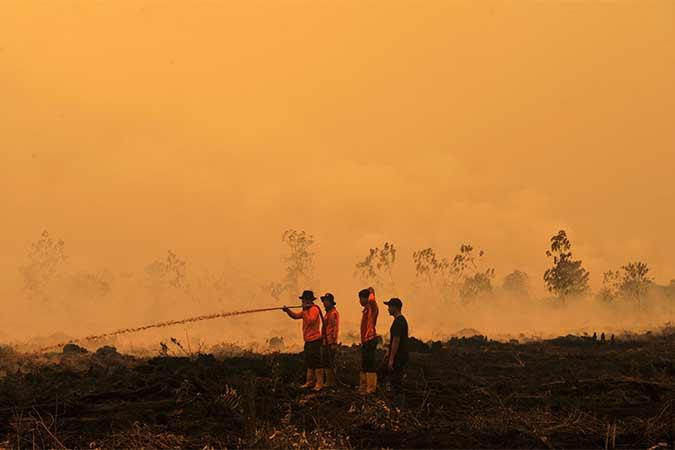 Kebakaran Lahan Gambut di Muarojambi