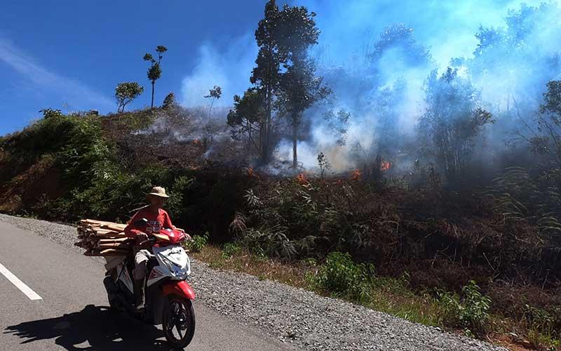 258 Desa di Jambi Berstatus Daerah Rawan Kebakaran Hutan dan Lahan