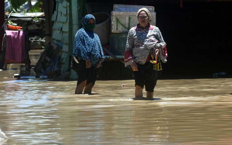 Pulahan Rumah Terendam Banjir Akibat Meluapnya Sungai Palu Bisnis Com
