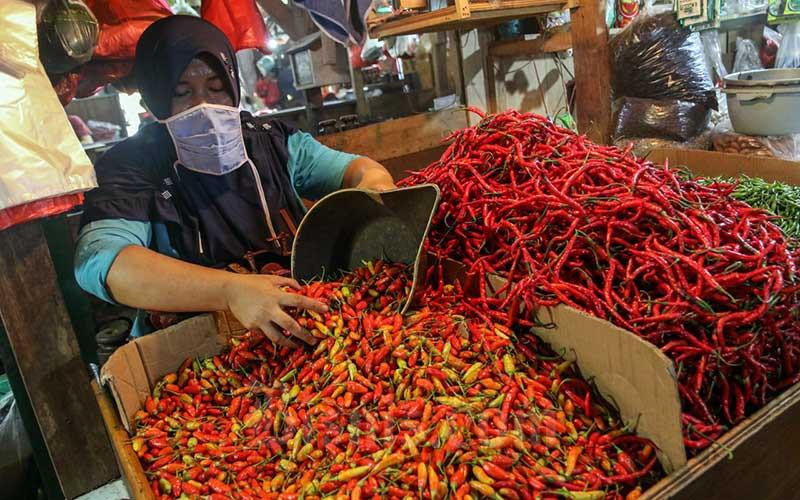 Harga Cabai Rawit Merah Tembus Rp120 Ribu Per Kilogram