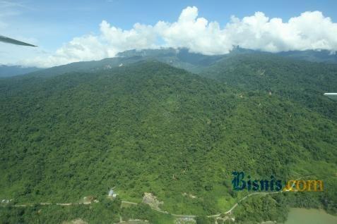 Permohonan izin pinjam pakai kawasan hutan untuk produksi batu gamping PT Eternal Richway di Desa Kaong Kecamatan Upau baru tahap rekomendasi Gubernur Kalsel.  - bisnis.com