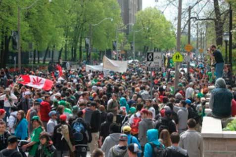 Pemerintah konservatif Kanada membuka pintu untuk meringankan hukum larangan konsumsi ganja.  - cannabisculture.com
